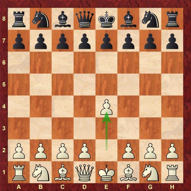 Åpningsspillet i sjakk etter 1. e4 med GM Mihajlo Stojanovic